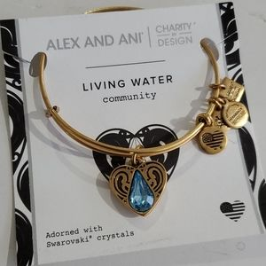Alex and Ani Living Water 💧 Community bracelet